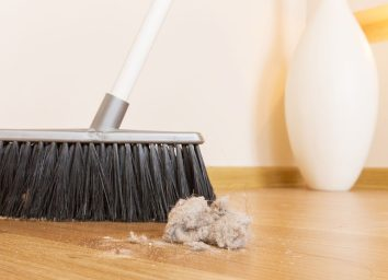 Broom and dust bunny