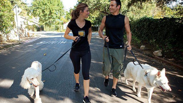 Maria Menounos walking dogs