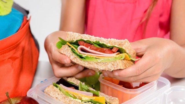 Woman hands sandwich