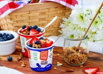 Good Karma dairy free flax yogurt