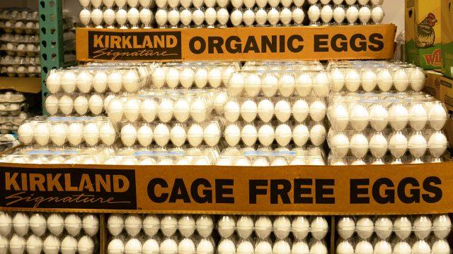 cartons of costco eggs