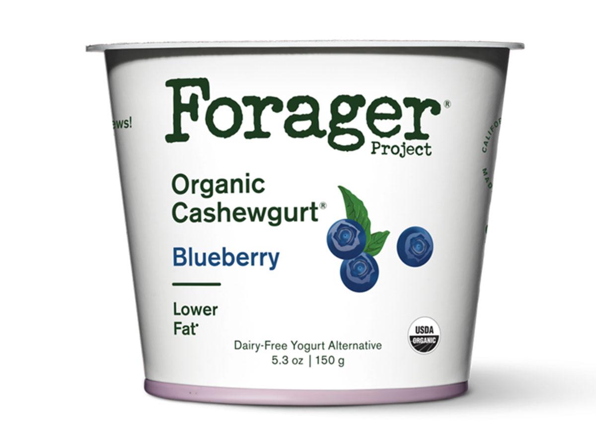 Forager organic blueberry cashewgurt