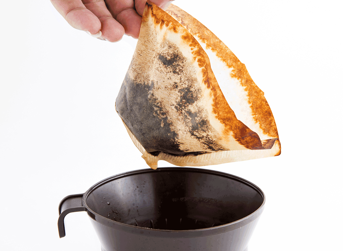 gross old coffee filter