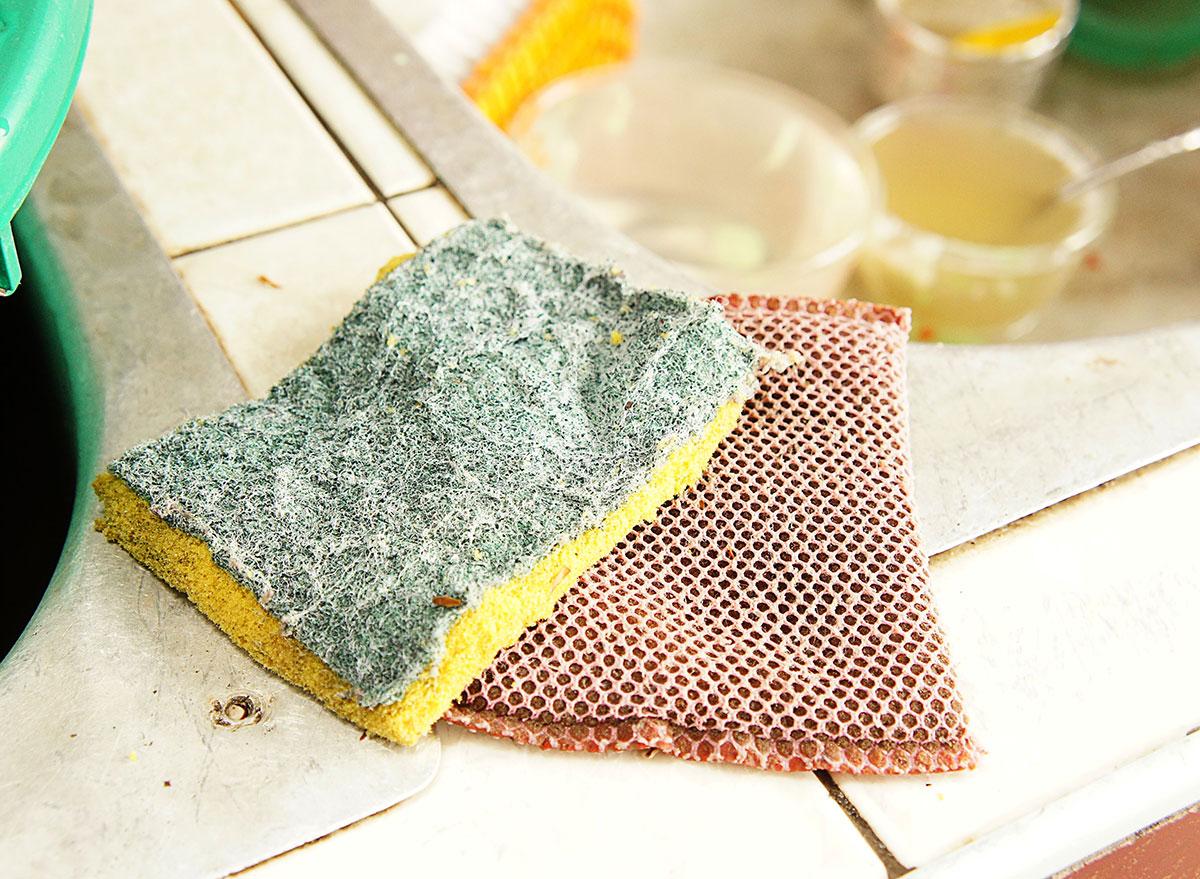gross sponges by skin
