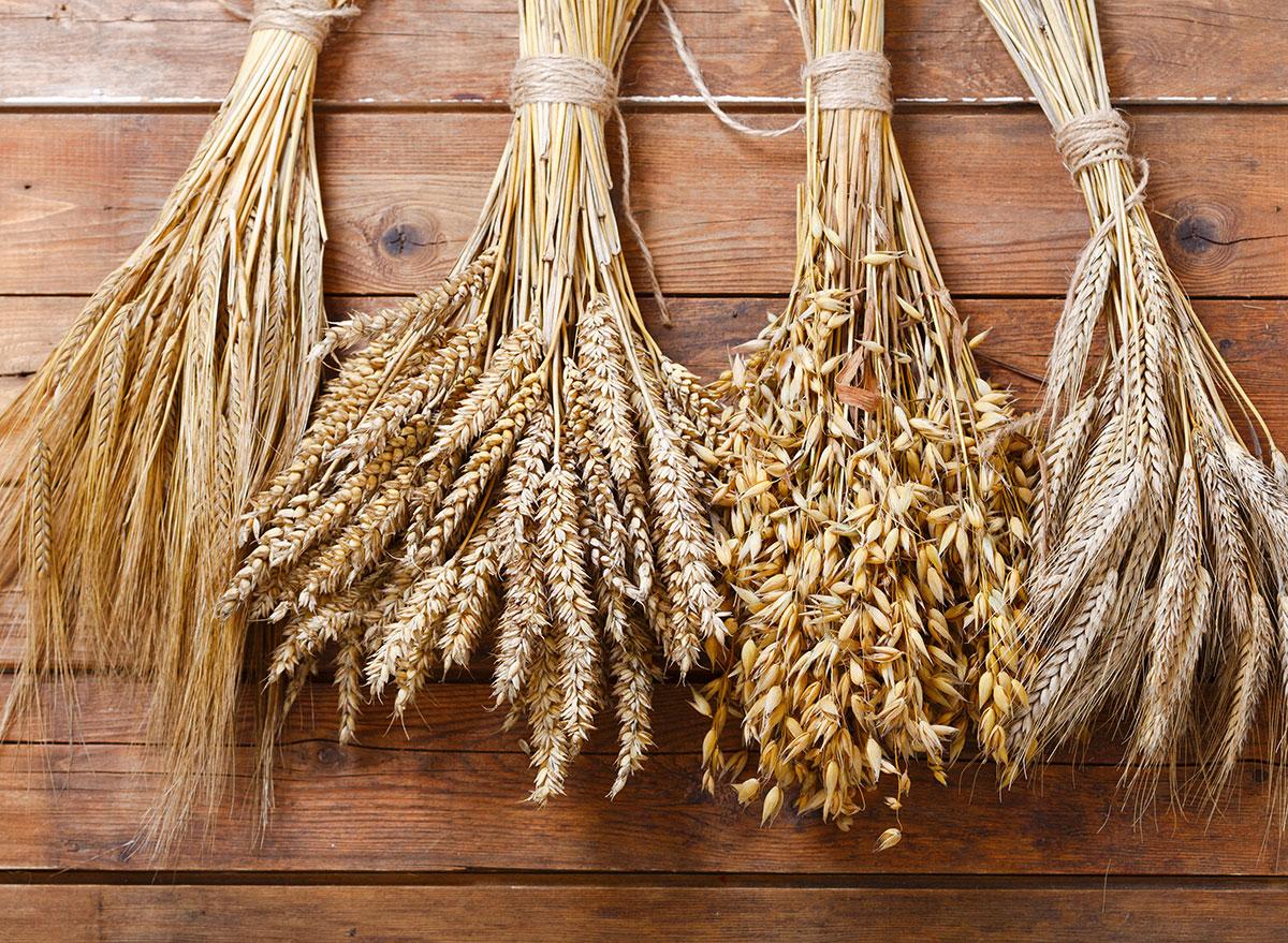 wheat barley rye ears celiac disease