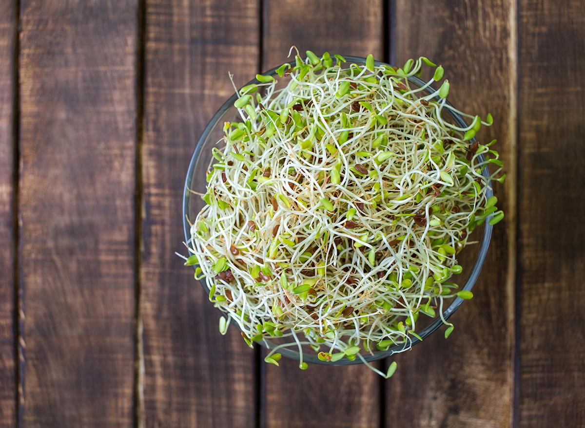 alfalfa-in-bowl