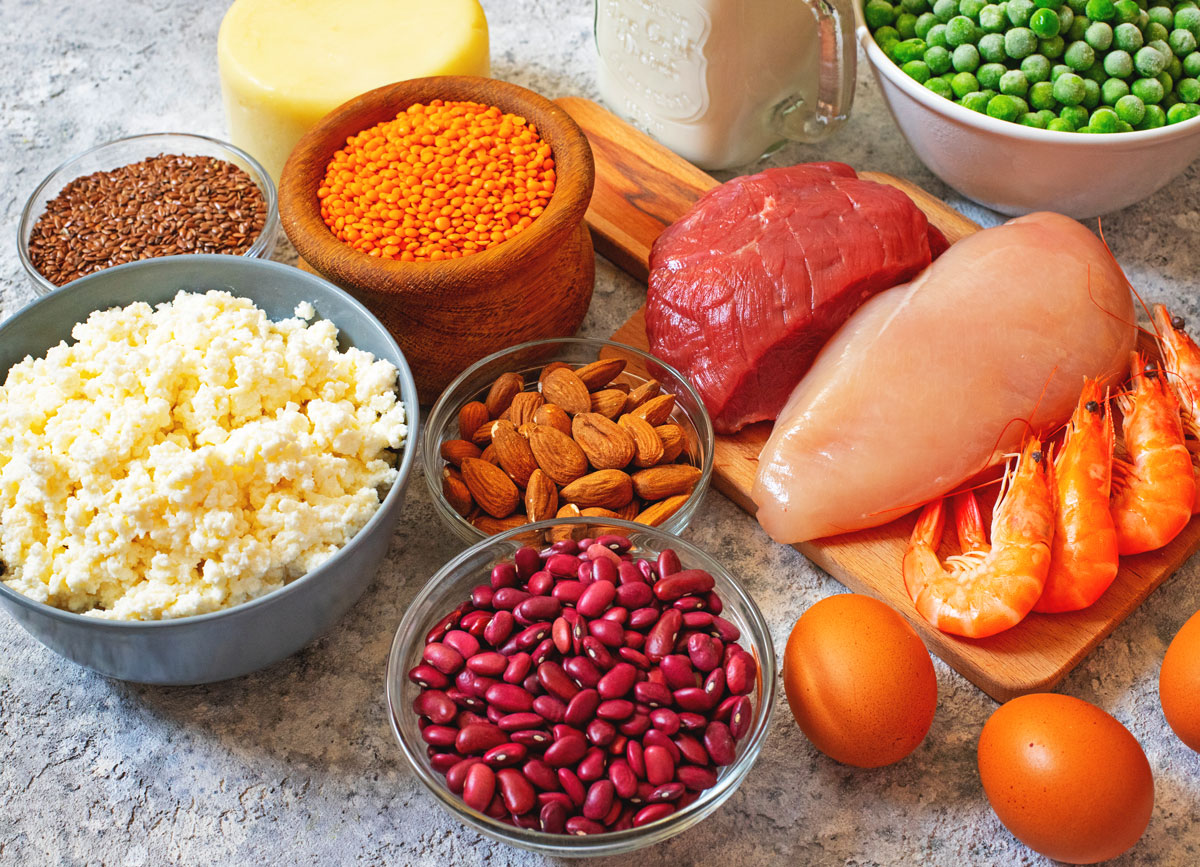 Plant and animal protein sources - chicken cheese beans nuts eggs beef shrimp peas