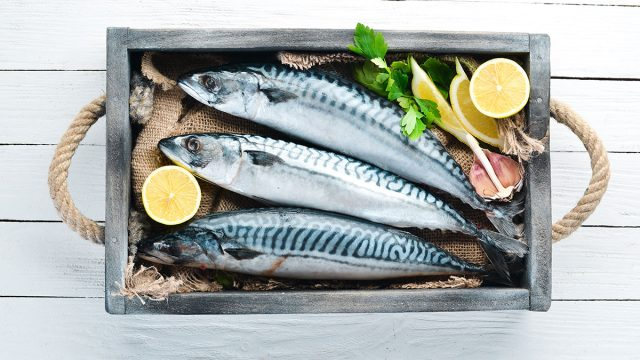 top view of raw mackerel on white wooden background
