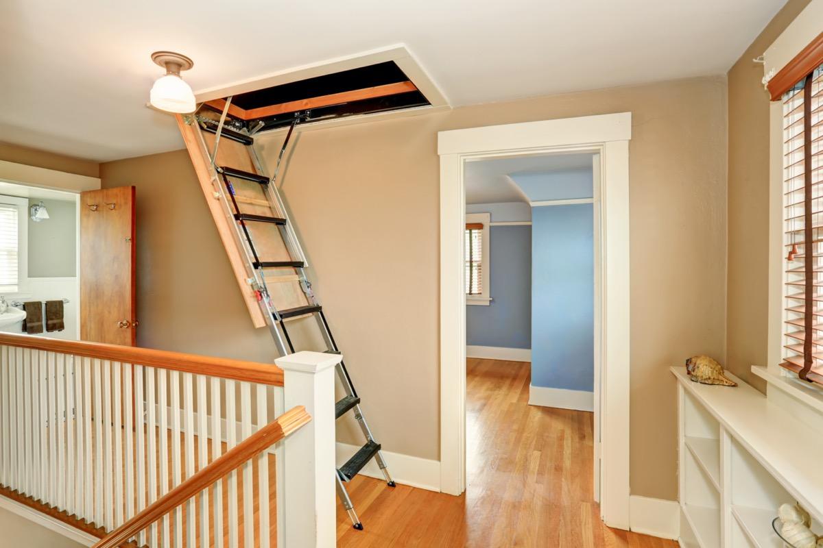 Hallway interior with folding attic ladder.