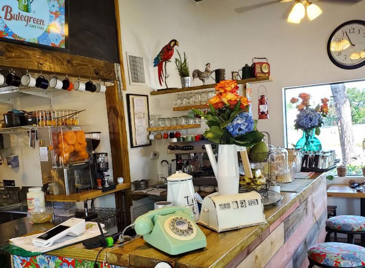 bluegreen cafe yard
