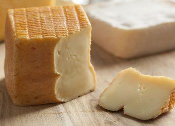 slice of limburger cheese block