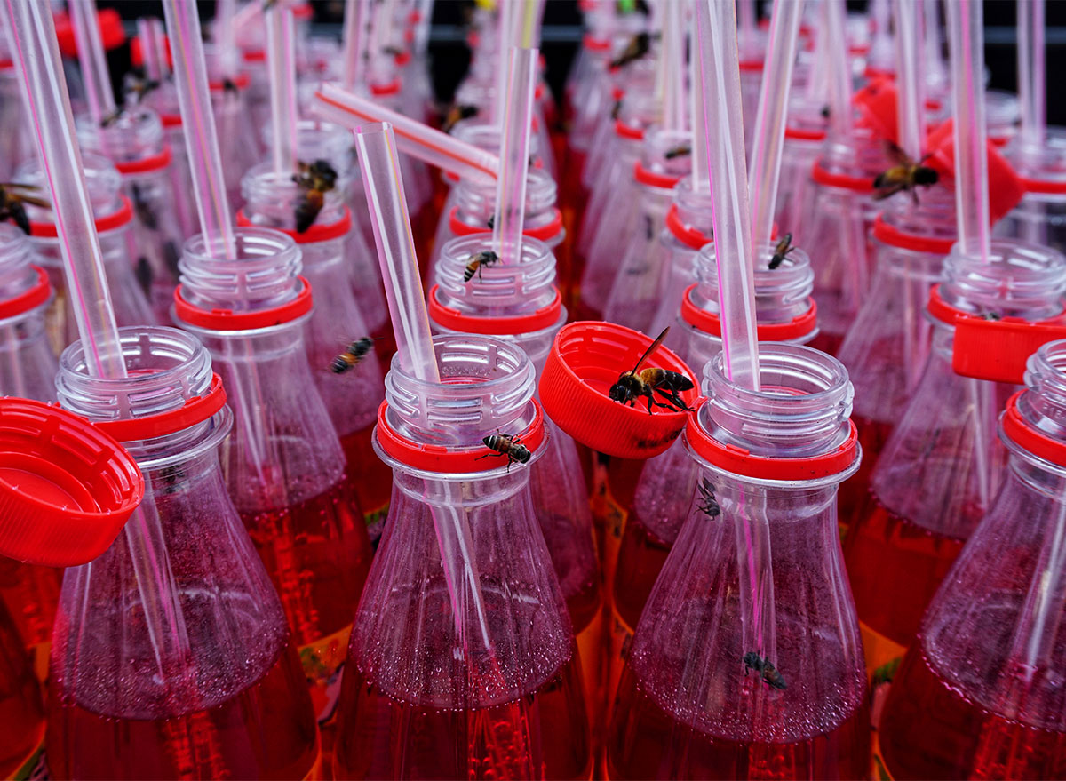 bees on soda bottles with plastic straws