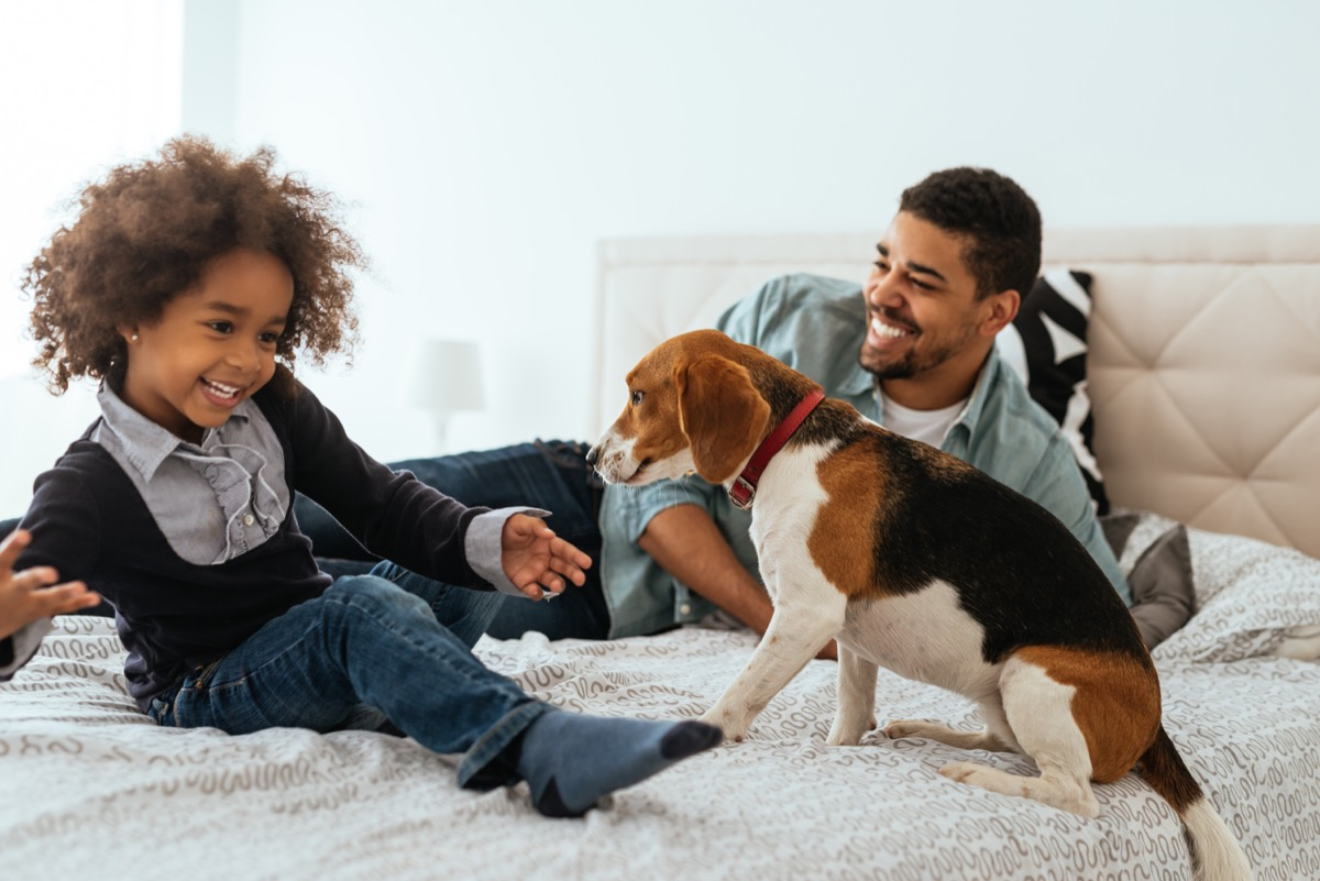 father and daughter spending time together with a dog on a bed
