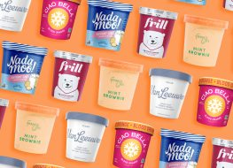 Vegan ice cream brands