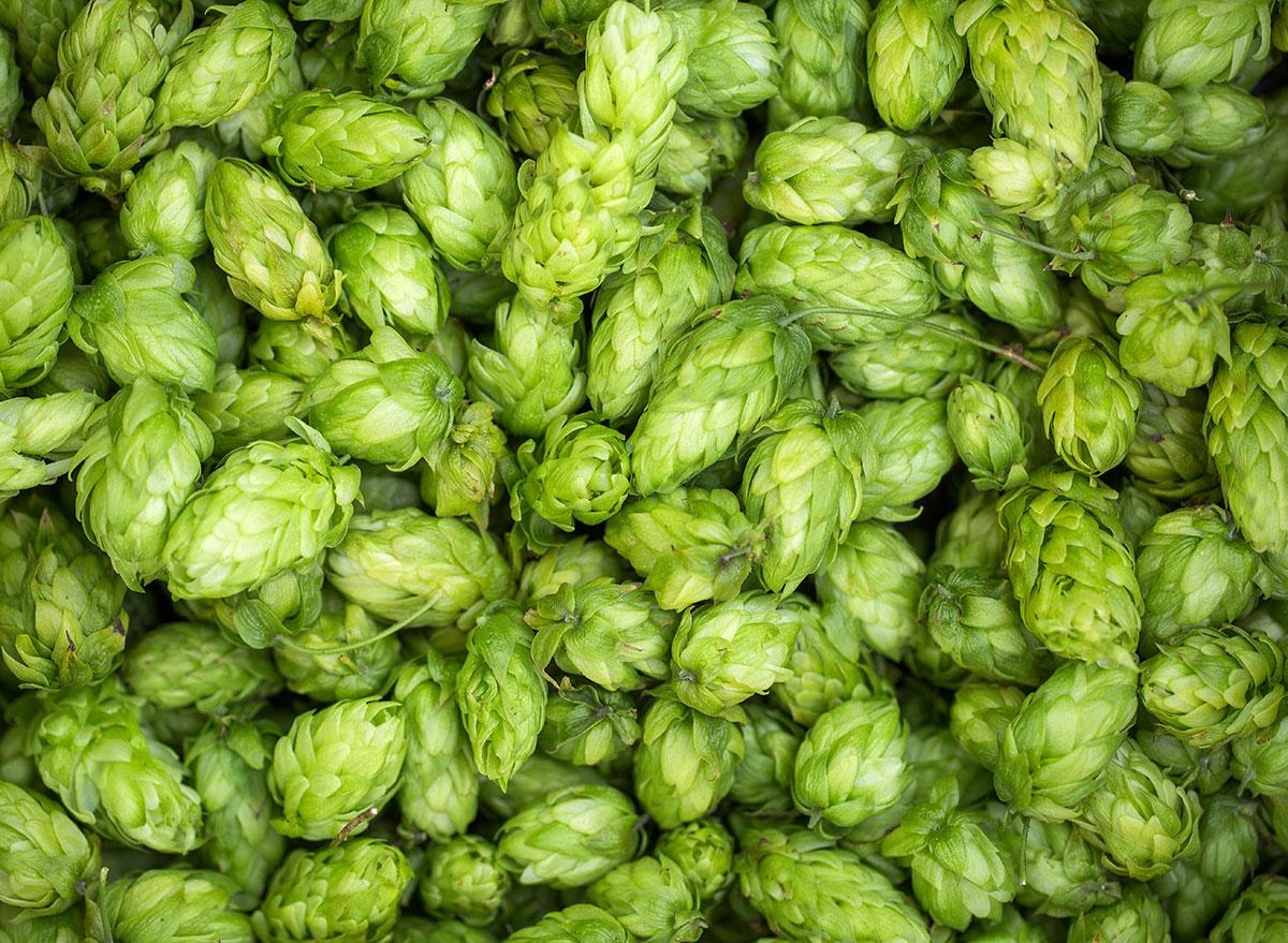 pile of green hops