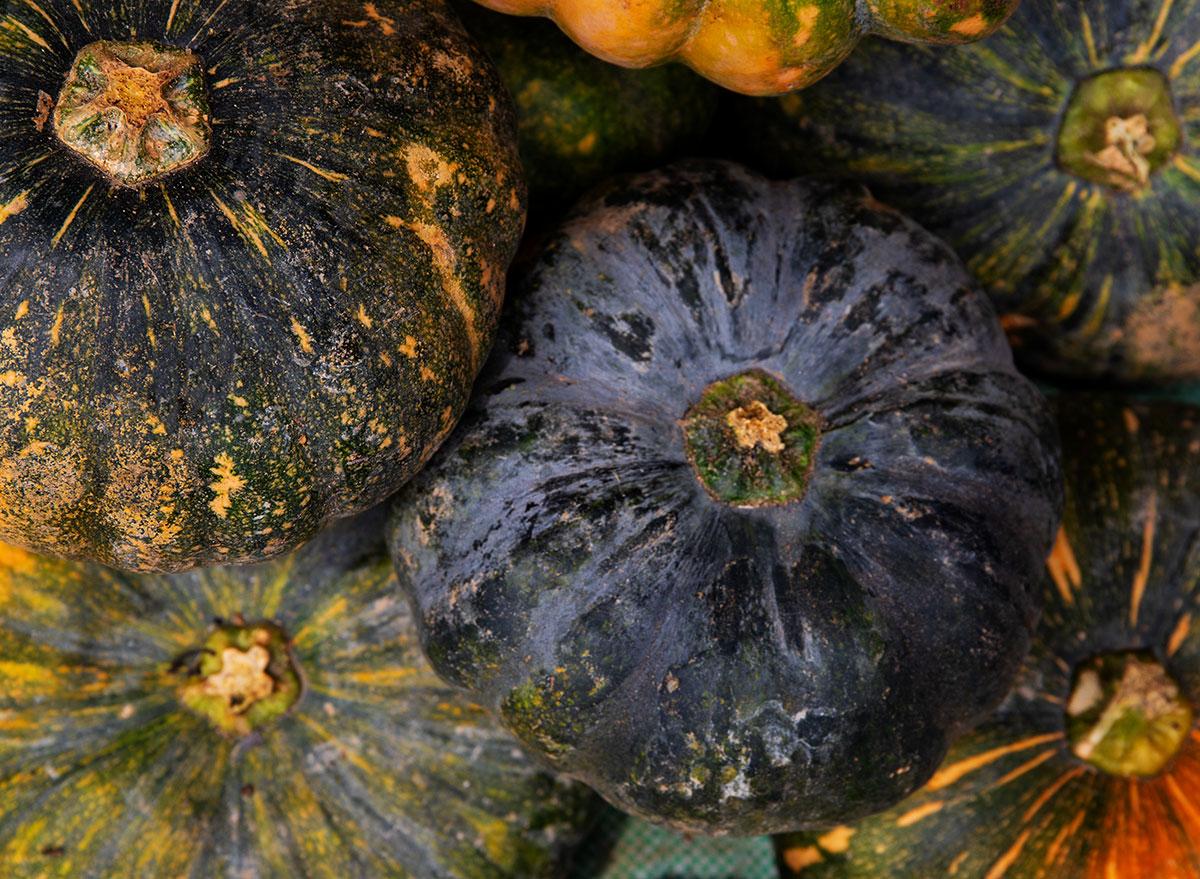 autumn cup squash close up