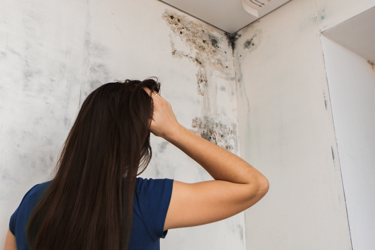 mold in the corner of your bathroom