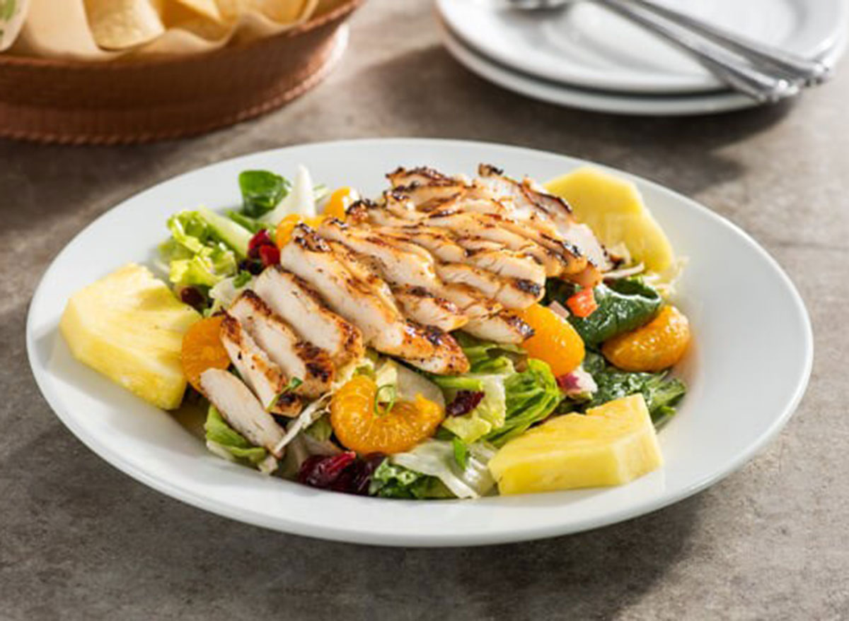Caribbean salad with grilled chicken on top from chili's