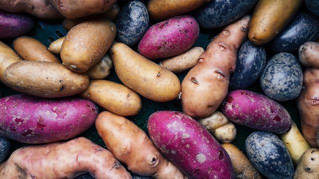 colorful potatoes