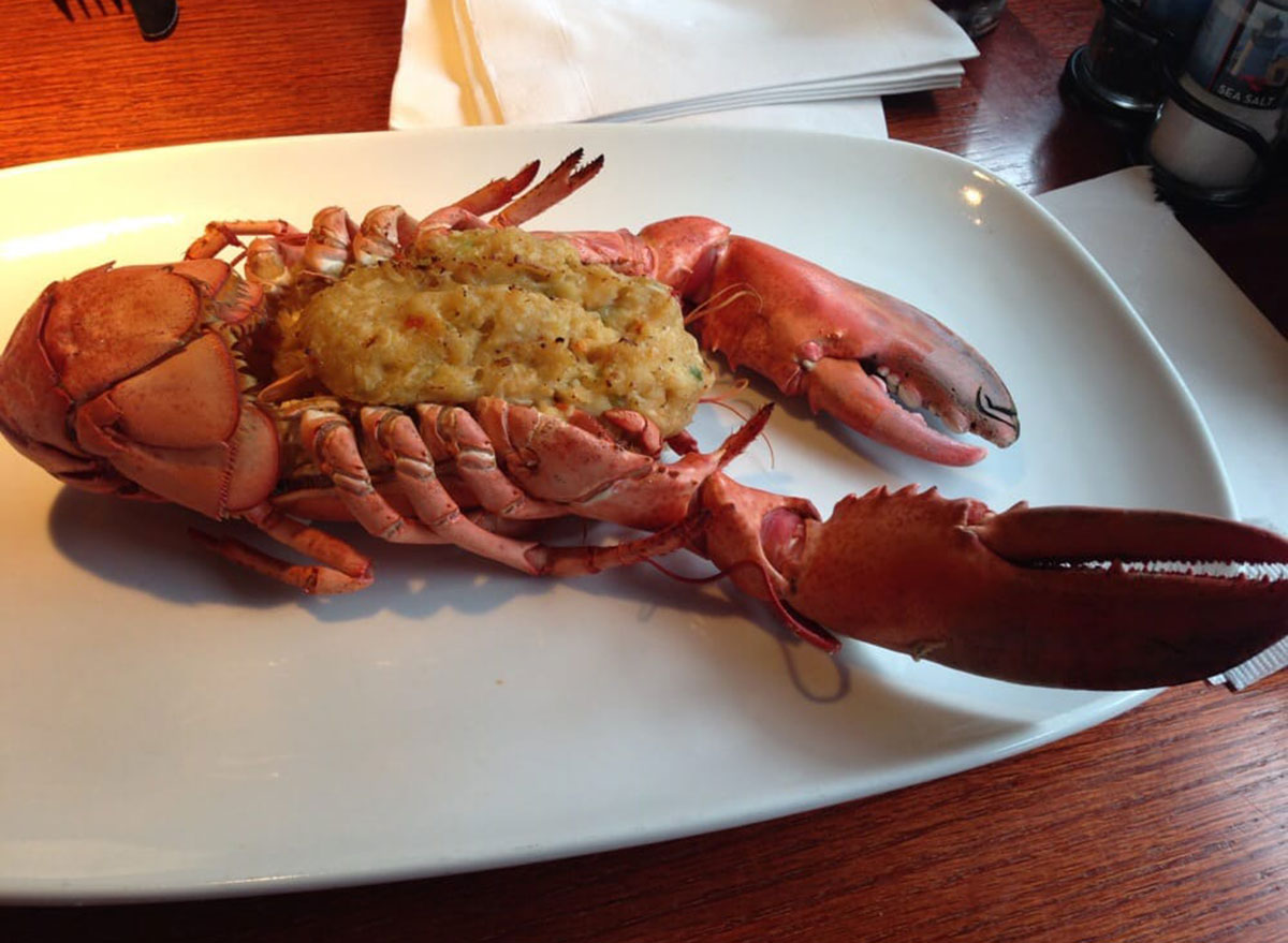 red lobster maine lobster