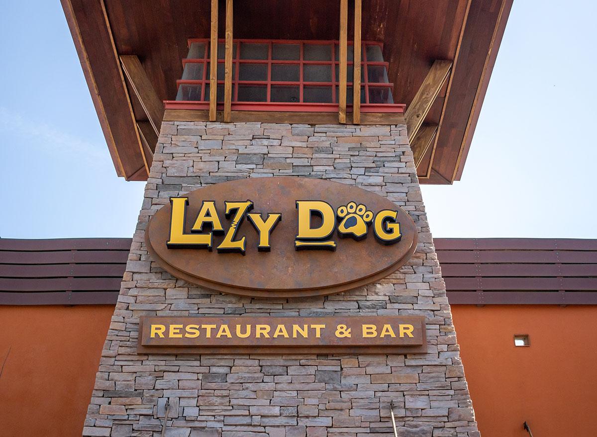lazy dog restaurant and bar