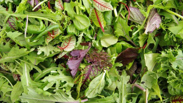 a closeup shot of mixed greens