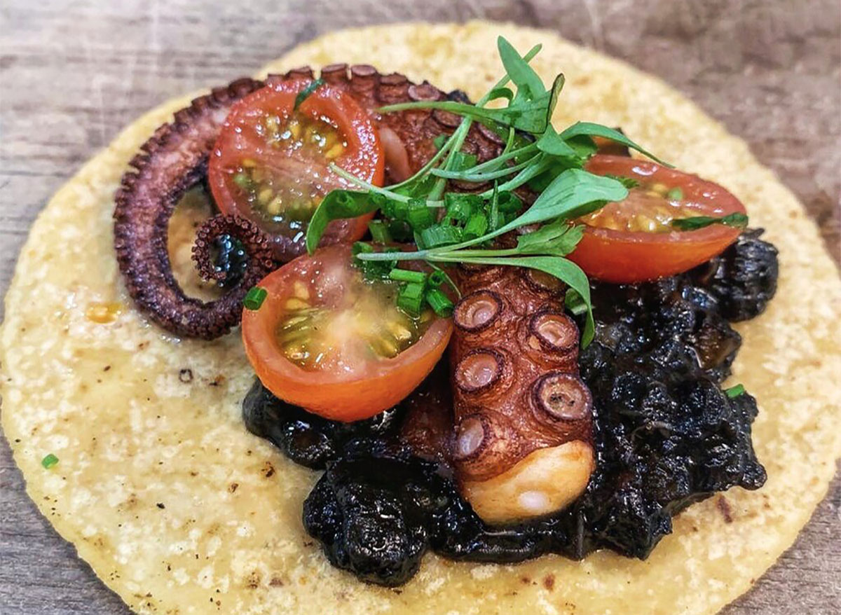 octopus taco from holbox in california