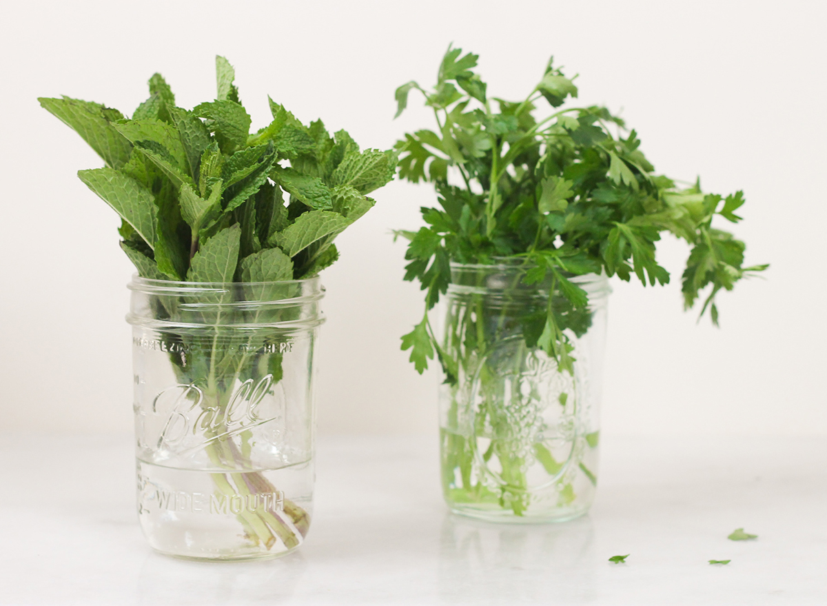 storing mint and parsley