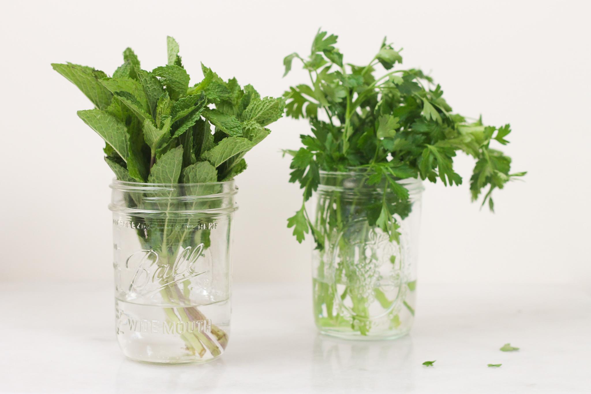 herbs-water-jar