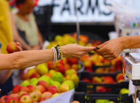 union square greenmarket apples