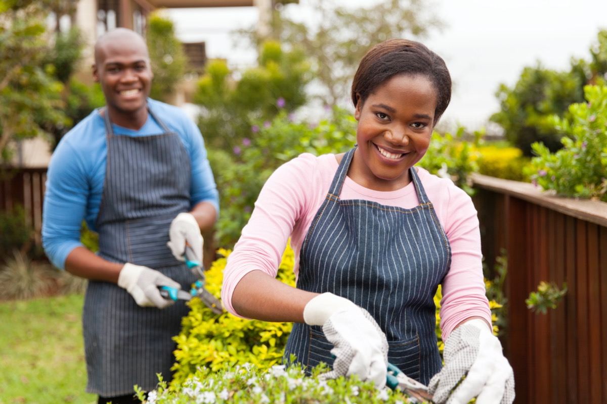 couple working together in home garden