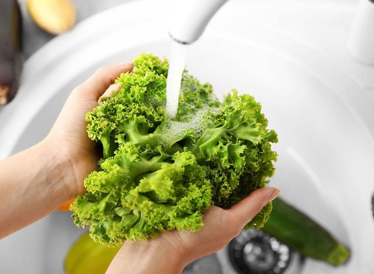 Women washing lettuce