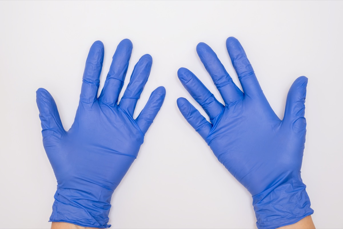 Human hands wearing blue surgical latex nitrile gloves for doctor and nurse protection during patient examination on white background.