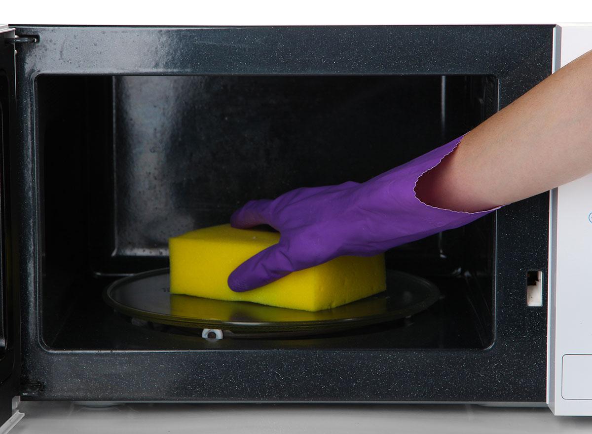 microwave sponge