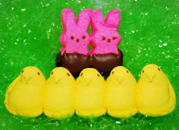 peeps easter bunnies and chicks