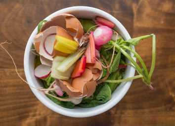 organic food waste