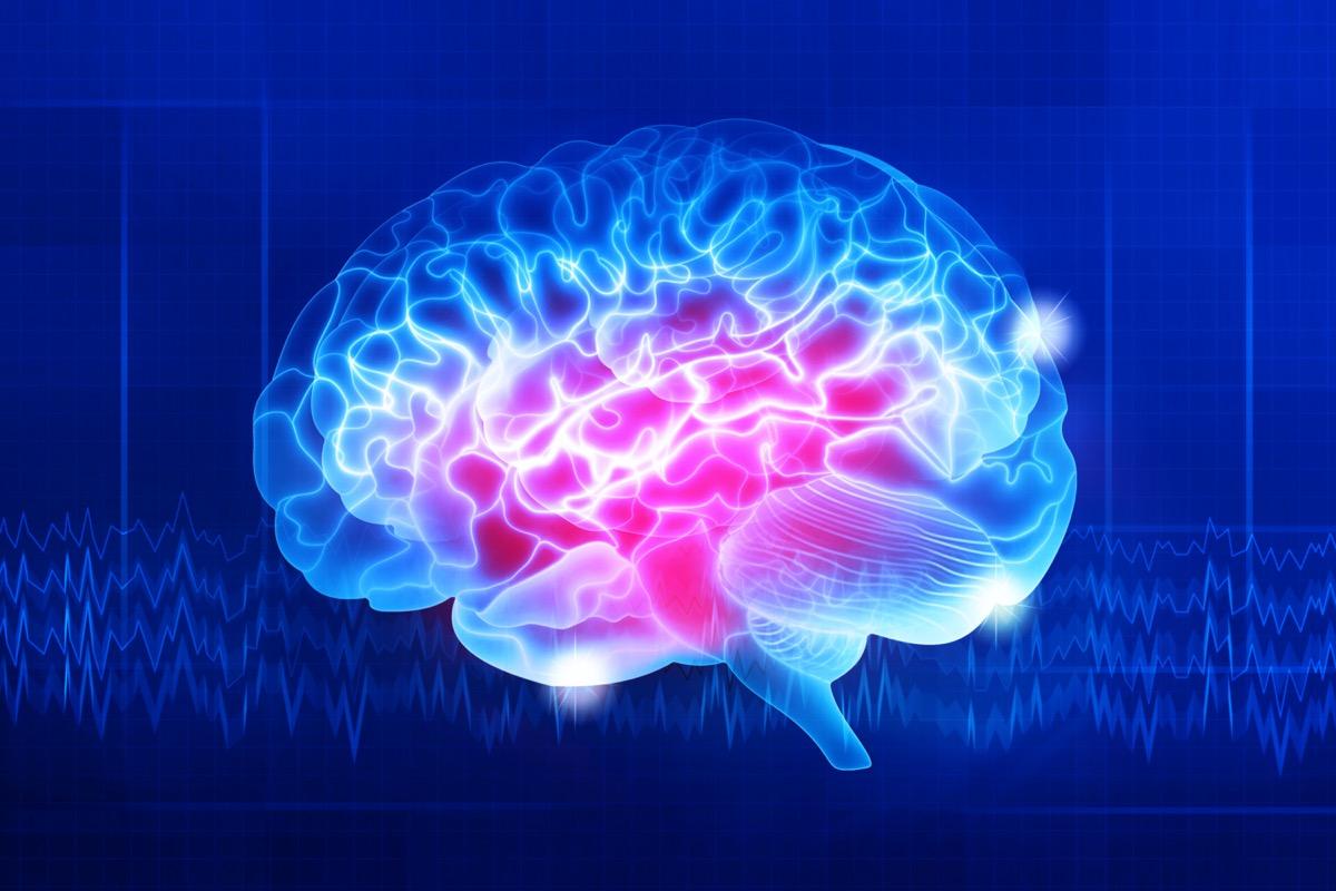 Human brain on a dark blue background