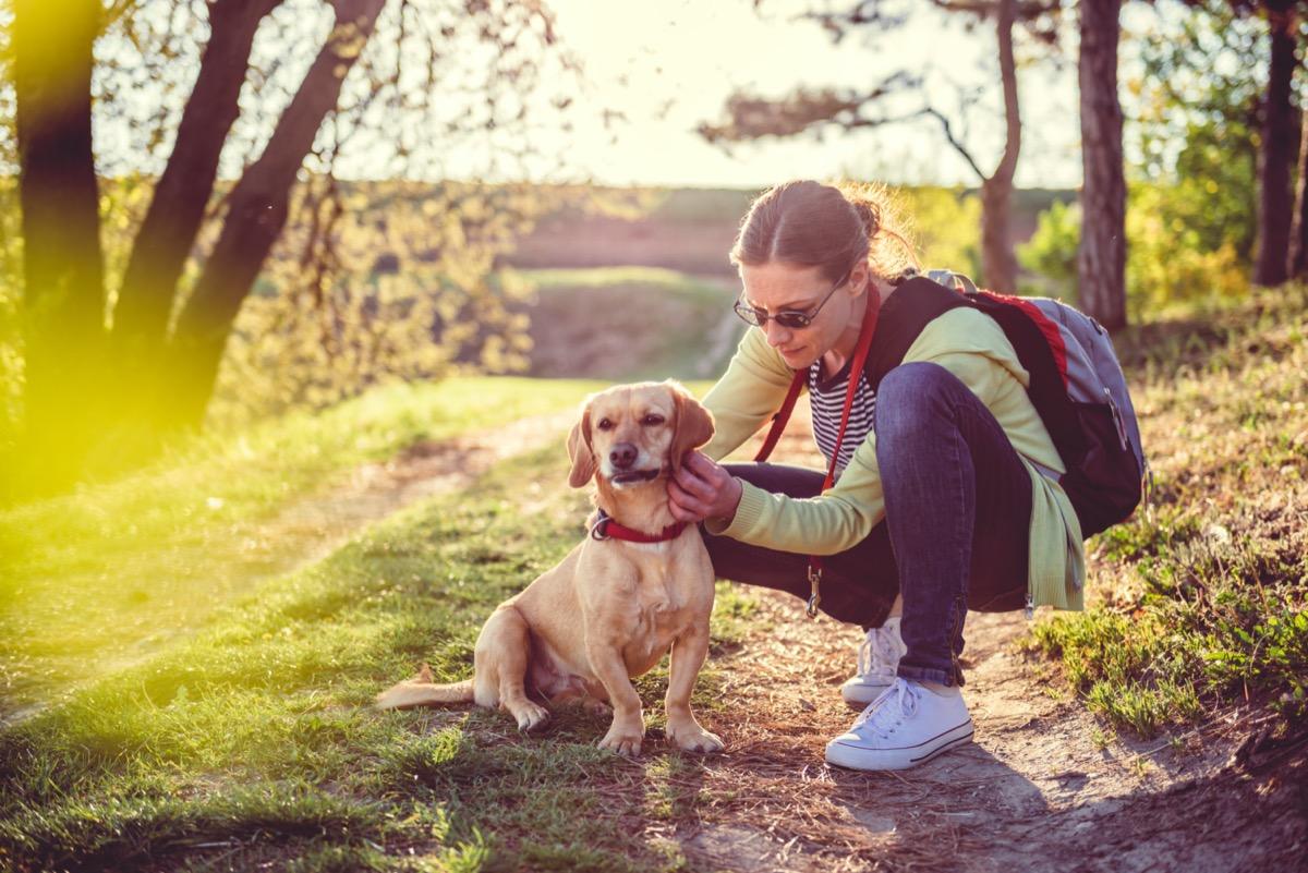 Woman checking dog for ticks