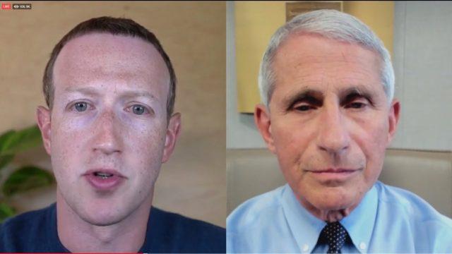 Fauci zuckerberg