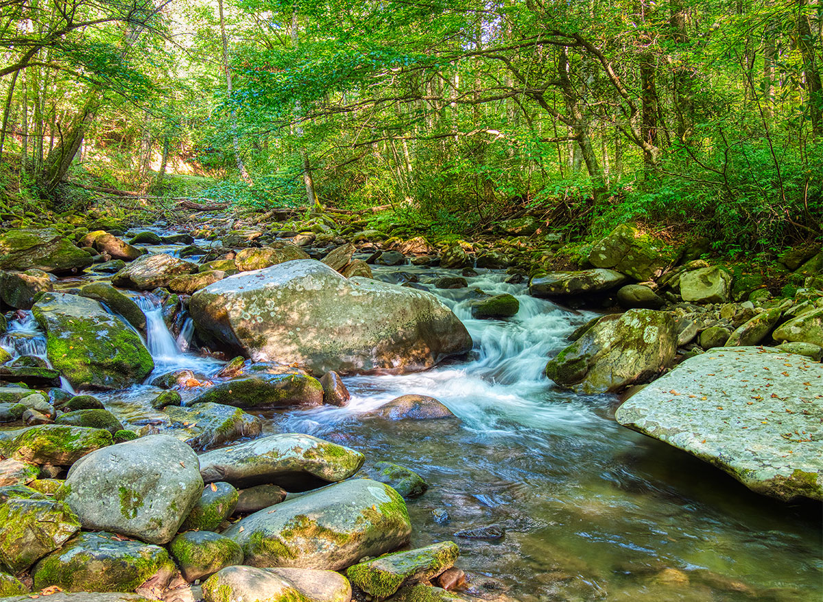 water and rocks at greenbrier great smoky mountains park tennessee