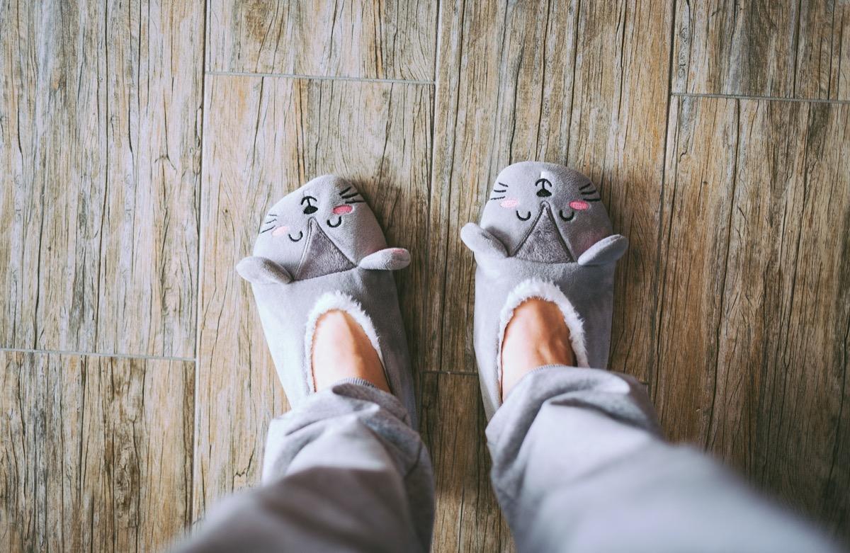 Slippers on women's legs cat face