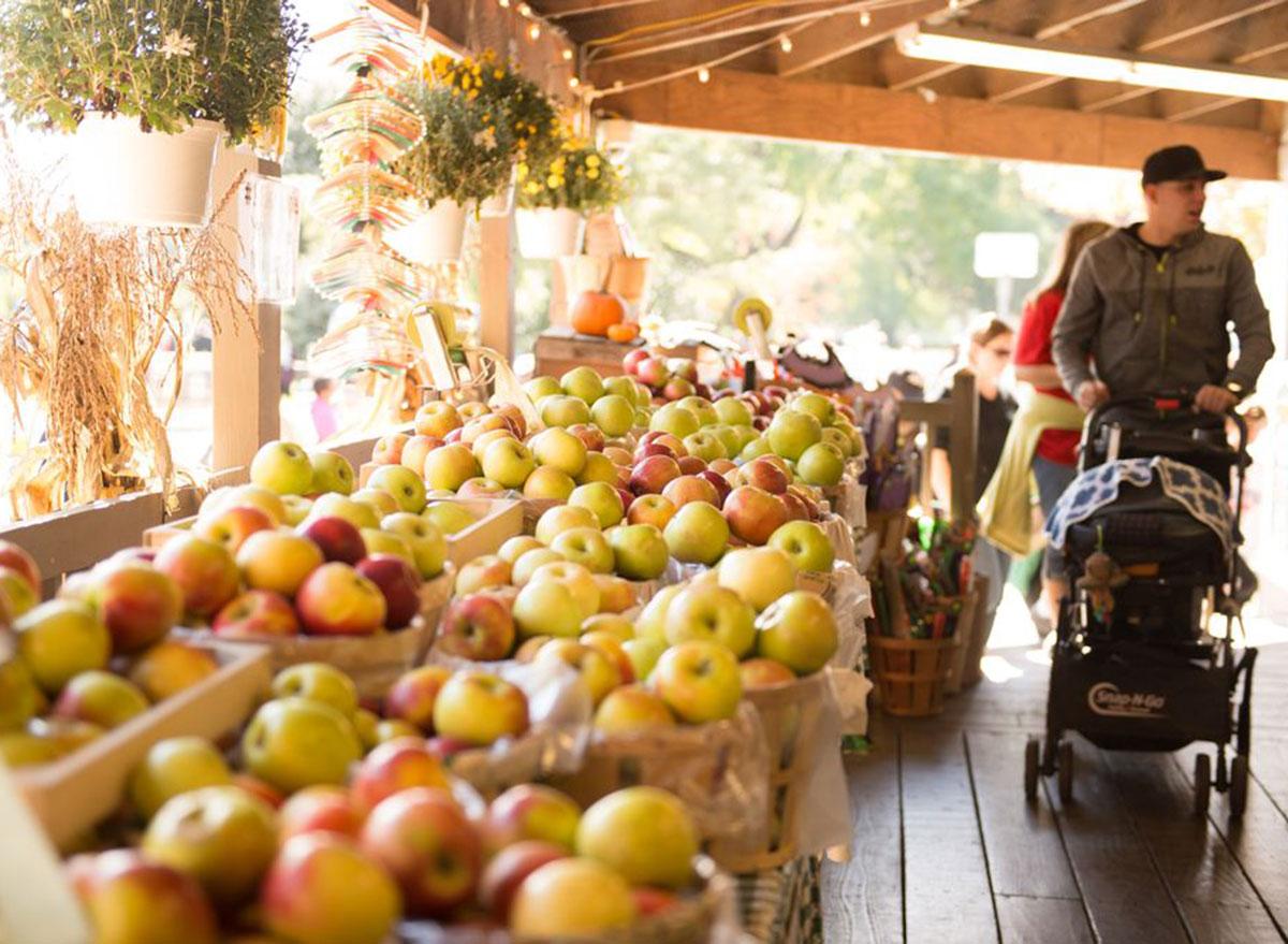 fifer orchard delaware