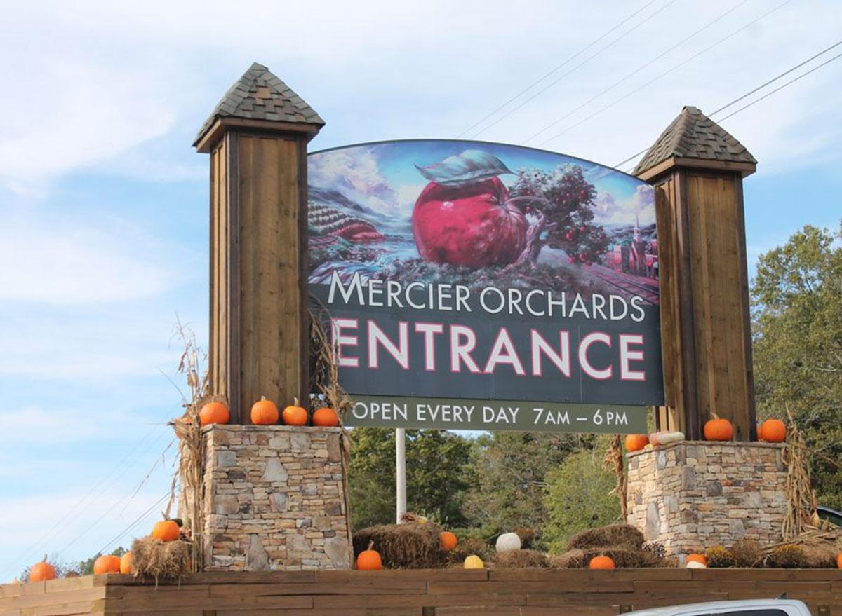 mercier orchards georgia