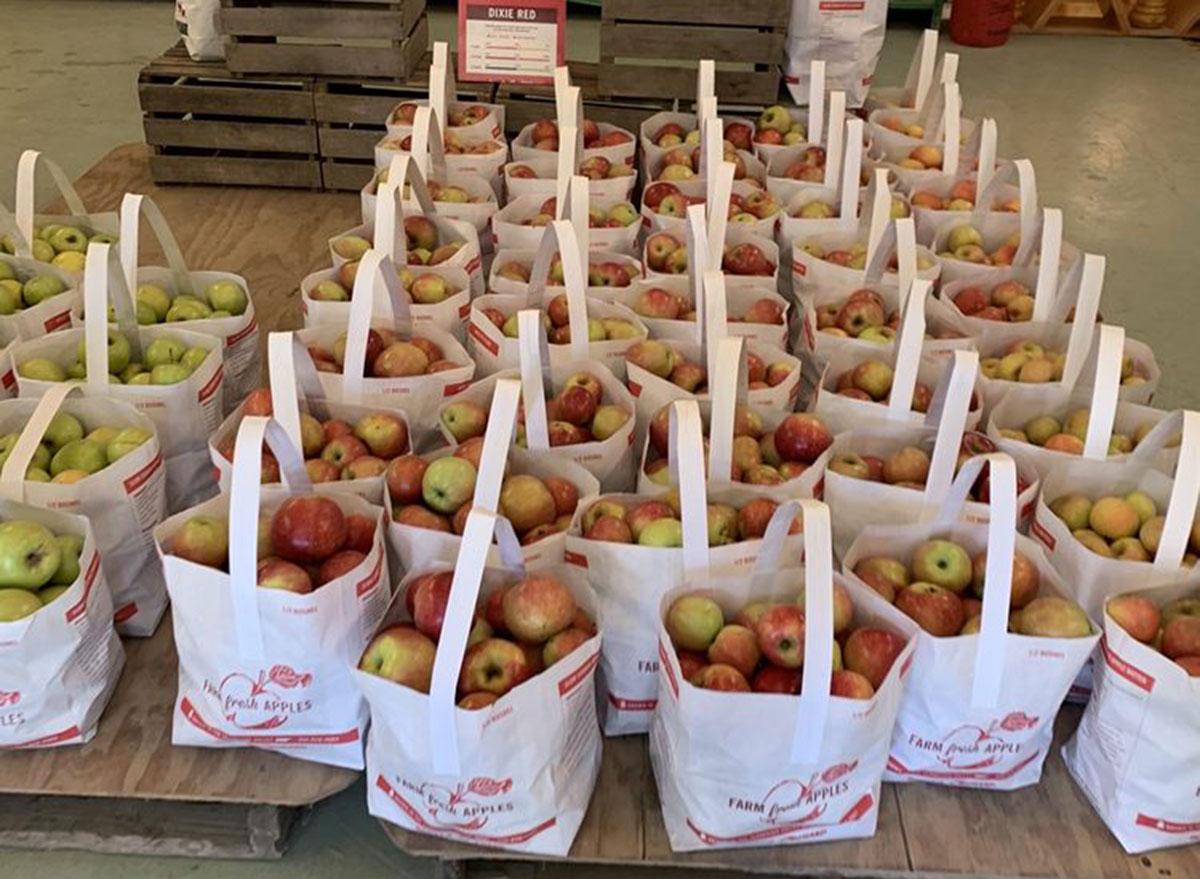 scotts orchard alabama
