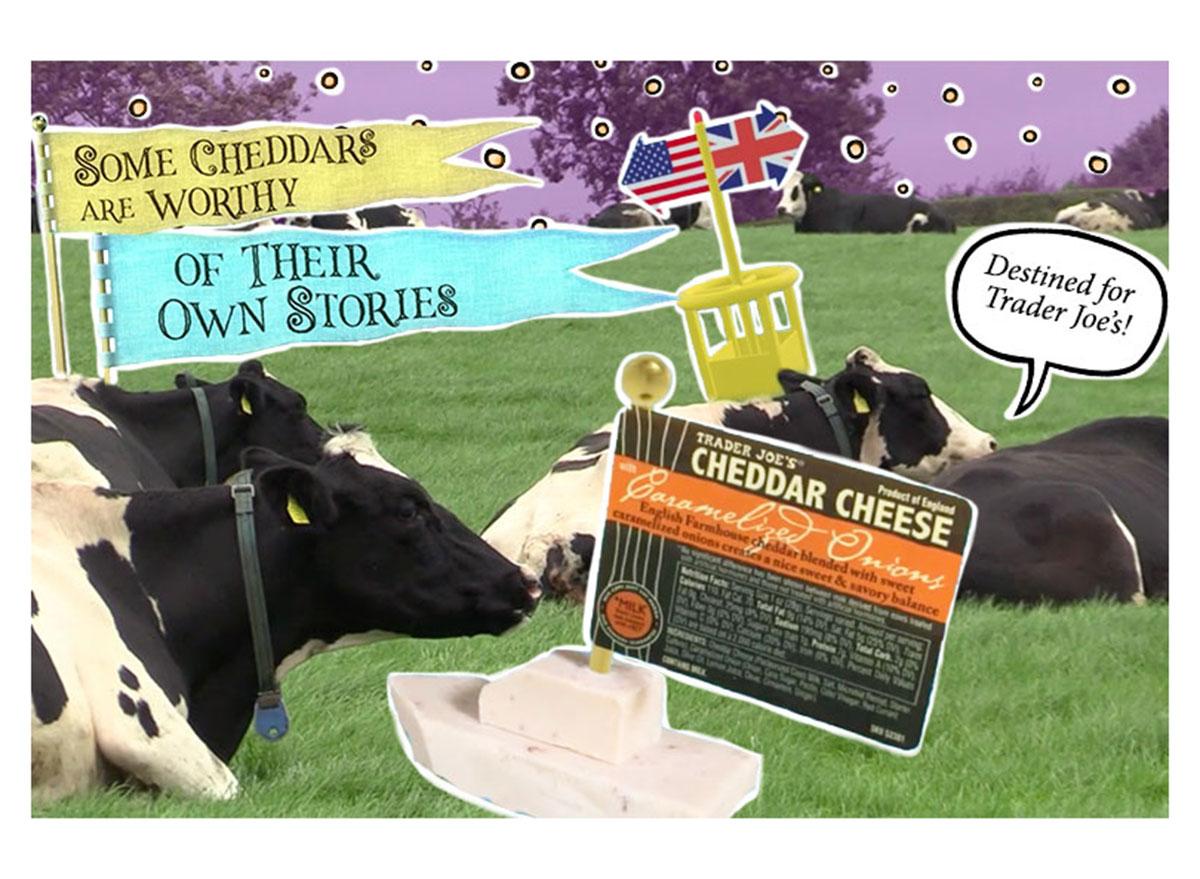 trader joes cheddar cheese