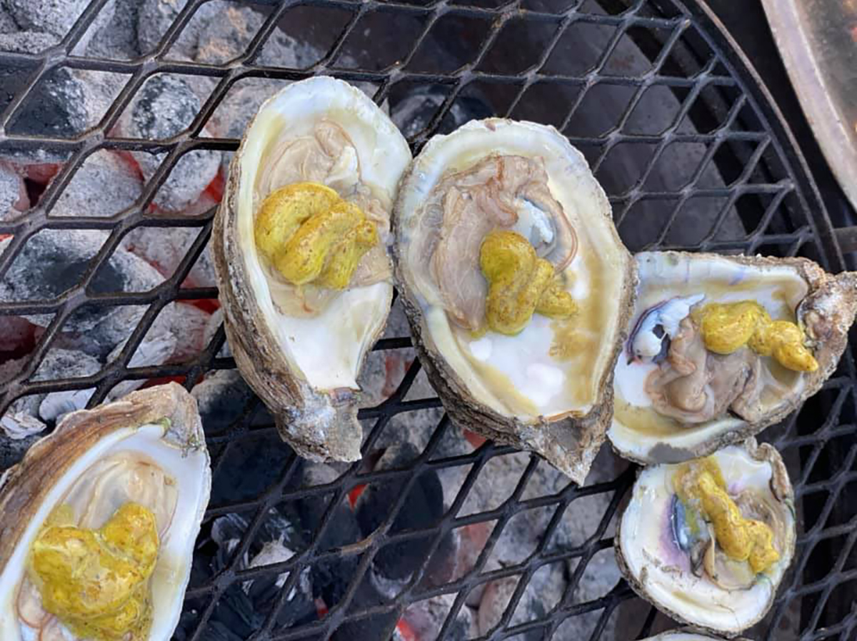 grilled oysters with mustard