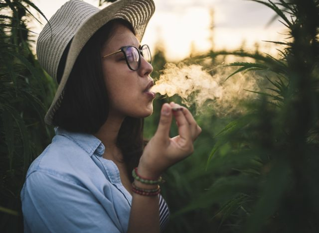 Woman with hat smoking joint in marijuana plantation at sunset.