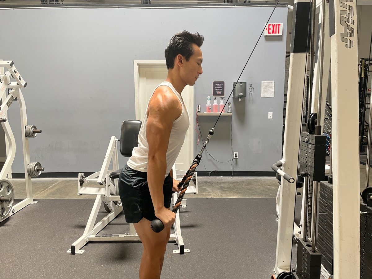 16 - rope triceps extensions