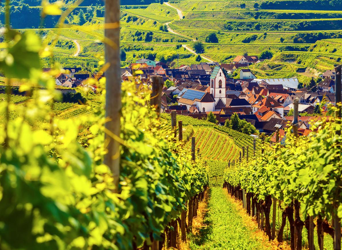 wine Germany