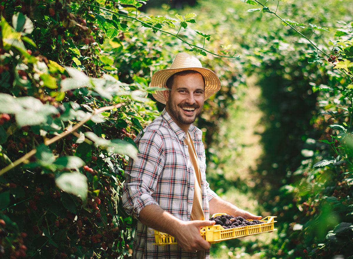 farmer holding berries